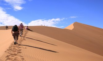 Tourists climbing Big Daddy, the highest dune in the Namiba Desert, Sossusvlei, Namibia