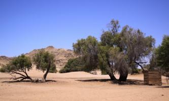 lumona_tours_namibia_sossusvlei003_t