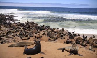 lumona_tours_namibia_swakopmund004_t