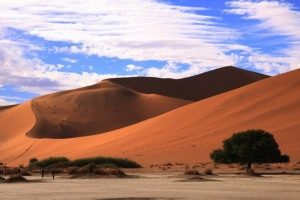 Big Daddy, the highest dune in the Namib Desert, Namibia