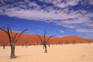 Deadvlei Namib Desert, Namibia